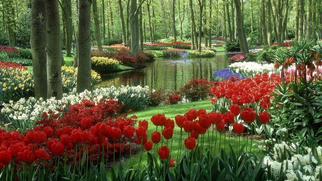 Las mejores imagenes de jardines de flores