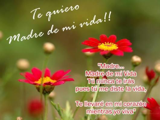 Imagenes De Flores Con Mensajes Para Mamá