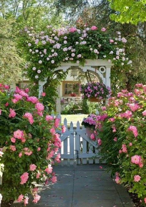 Imagenes de jardines con rosas para fondo del telefono celular