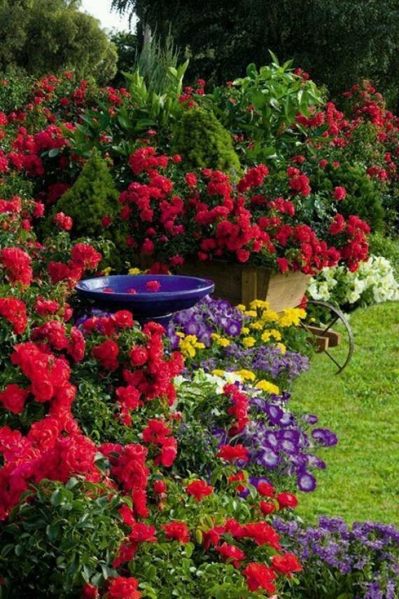 Imagenes de jardines de flores para whatsapp