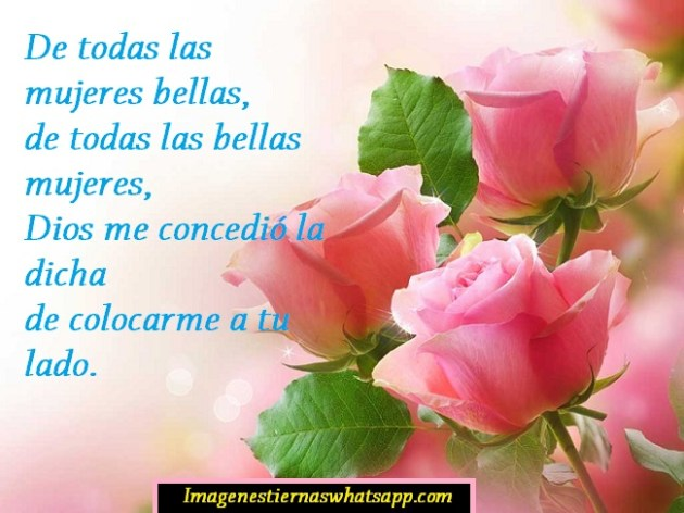 imagenes de lindas rosas con poemas de amor para mi novia