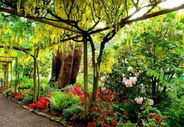 Bonitas imagenes de los jardines Butchart