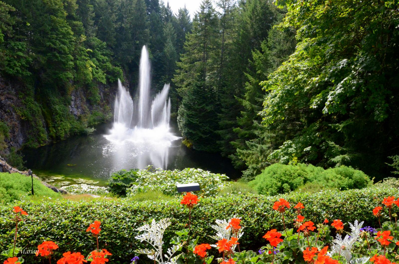 Bell simas imagenes del jardin butchart en canad for Fotos de jardines