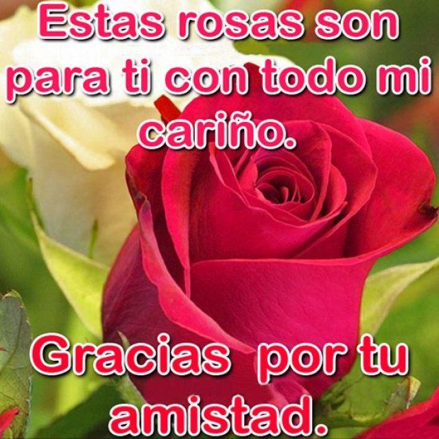 Descargar imagenes de rosas con frases gracias por tu amistad