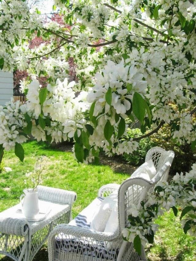 Diseño de zonas de descanso en jardines