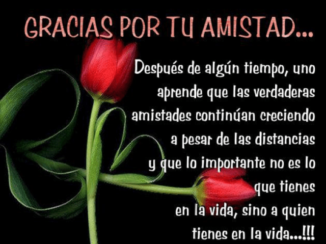 Gracias por tu amistad imagenes de rosas whatsapp