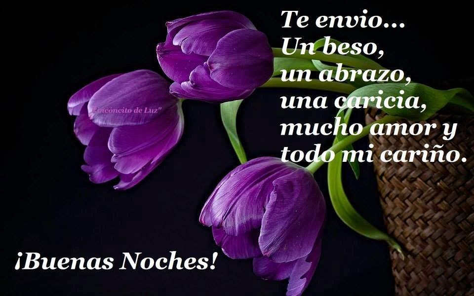 Imagenes De Flores Con Frases De Buenas Noches