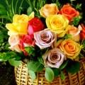Imagenes De Flores Para Felicitar Por Whatsapp