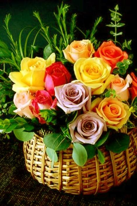 Imagenes de lindas rosas para regalar por whatsapp