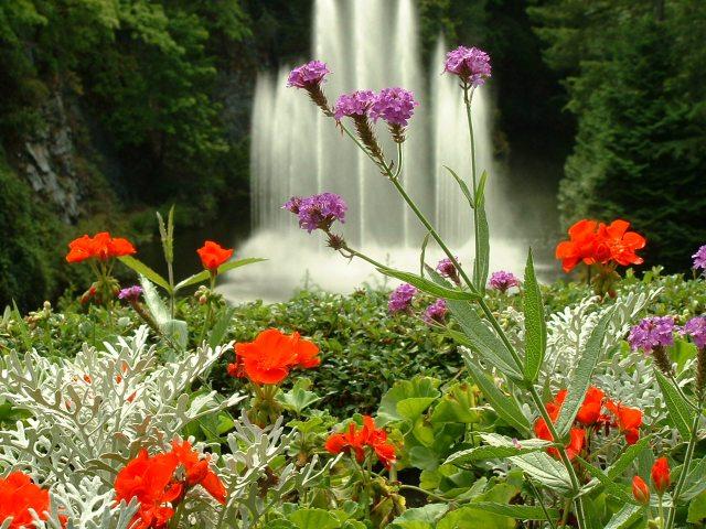 Imagenes del as cascadas del Jardin Butchart