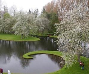 Imagenes Del Jardín De La Especulación Cósmica Escocia