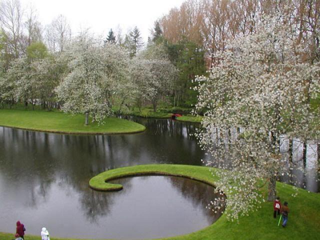 Jardines hermosos especulacion cosmica en Escocia