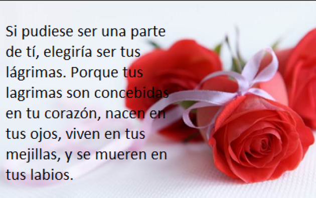 Versos de amor en imagenes de rosas rosas para enviar por mensaje