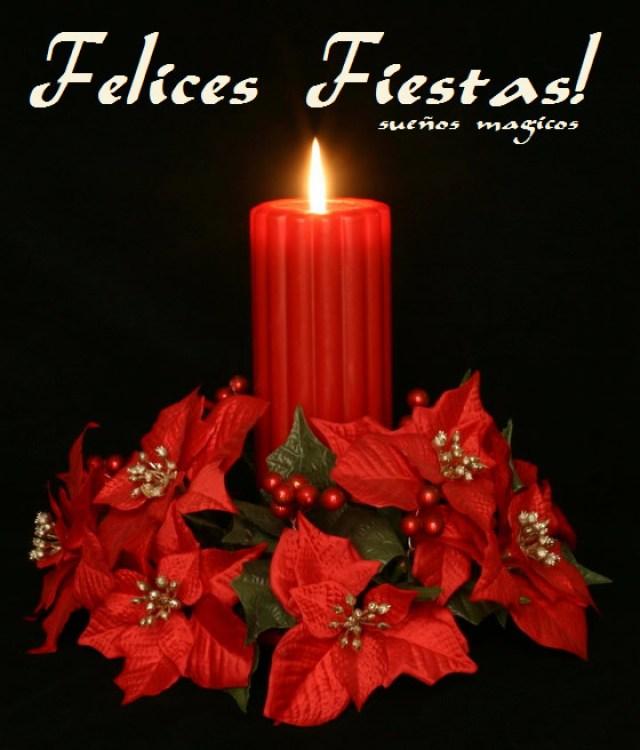 Tarjeta coon flores de navidad felices fiestas