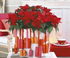 Ideas De Decoraciones Con Flores De Navidad