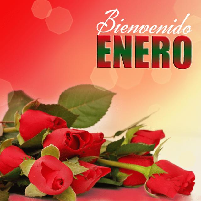 Imagen Rosas  Rojas Bienvenido mes de enero