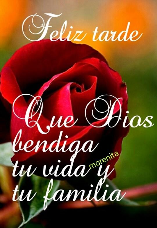 Imagenes de rosas rojas feliz tarde