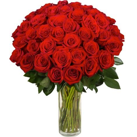 Hermoso ramo de rosas rojas para enviar por whatsapp a mi amor el 14 de febrero
