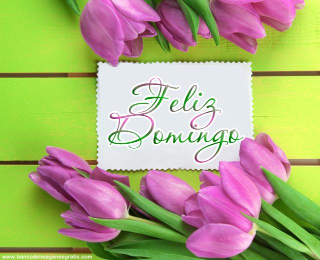 Imagenes Feliz Domingo con Flores Para Compartir