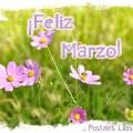 Imagenes Con Flores Para Desear Un Feliz Mes De Marzo