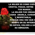Imagen De Una Rosa Con Versos Cortos Para La Mujer