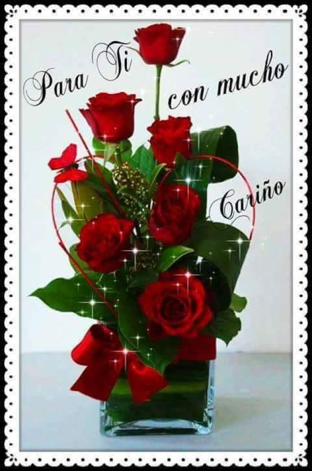 Imagenes de rosas para regalar en un dia especial