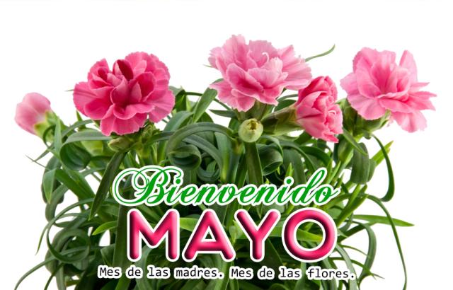 Imagenes con flores para dar la bienvenida a mayo