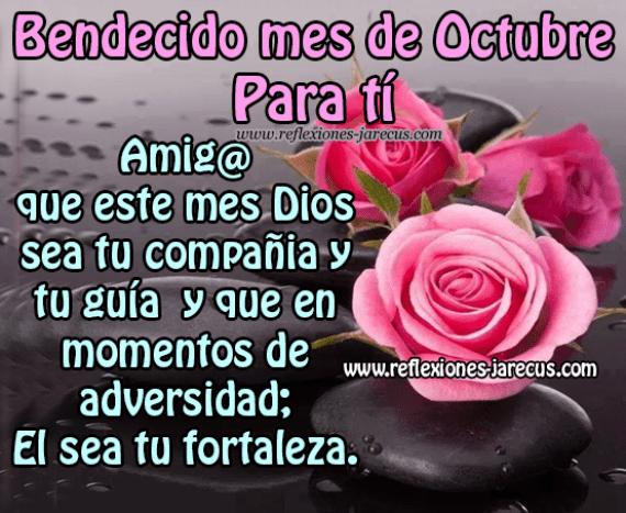 Imagenes de rosas con mensajes Bendecidomes de octubre para ti