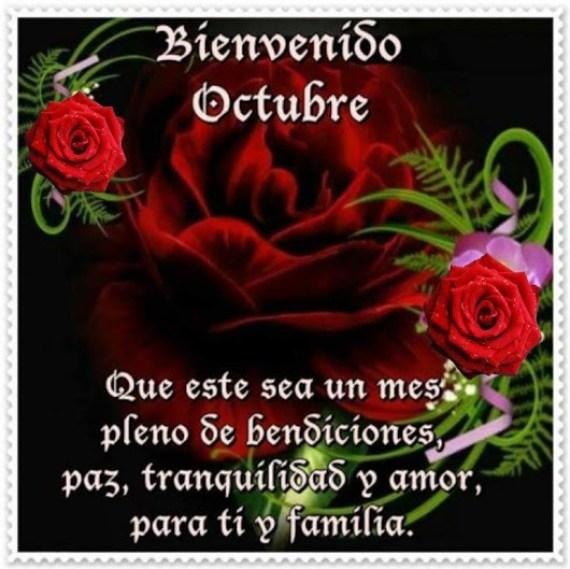 Rosas rojas con mensaje para el mes de octubre que inicia