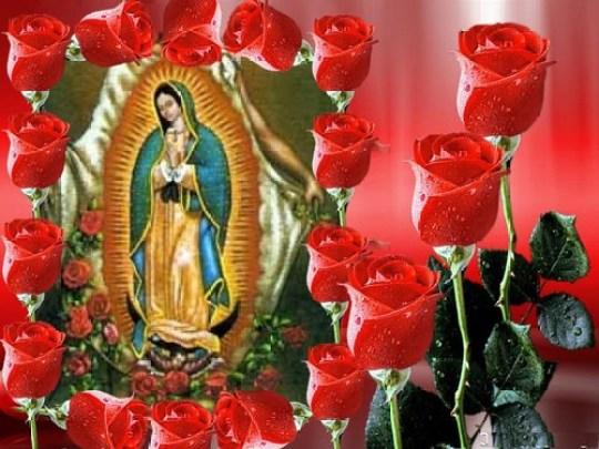 Imagen de La Guadalupana con Rosas Rojas