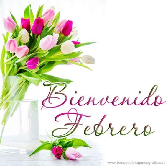 Imagen de rosas para dar la bienvenida a febrero en whatsapp
