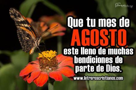 Imagen de una flor y mariposa con mensaje para el mes de agosto