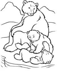 Dibujos de osos polares para colorear para nios ...