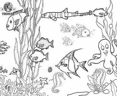 Hermosos Dibujos De Arrecifes De Coral Para Colorear Fácil