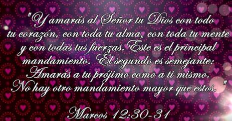 Frases Biblicas Amor Al Projimo