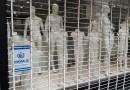 Mar del Plata: comerciantes protestaron para solicitar la reapertura de los locales