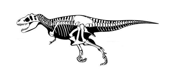 Imagenes De Tiranosaurios Rex Para Colorear Dinosaurio