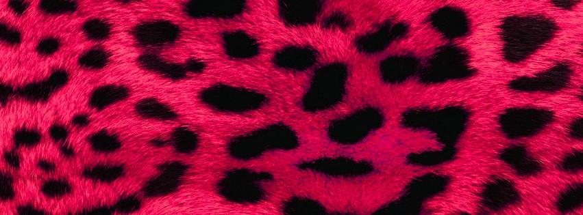 Dragon Ball Super Hd Wallpaper Pink Leopard Facebook Cover