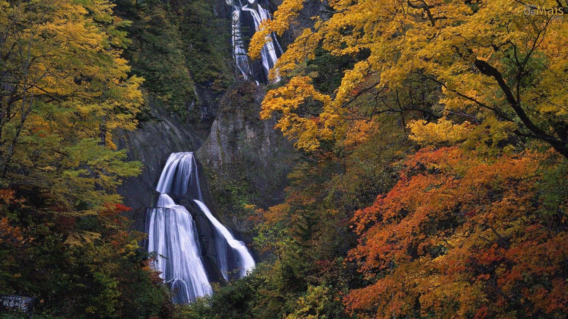 Waterfalls Desktop Wallpaper Forest Falls Imagens E Gifs Paisagens De Outono