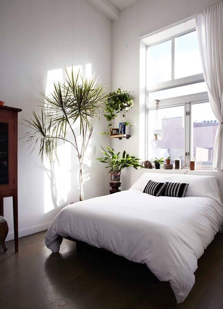 decoração minimalista no quarto com plantas