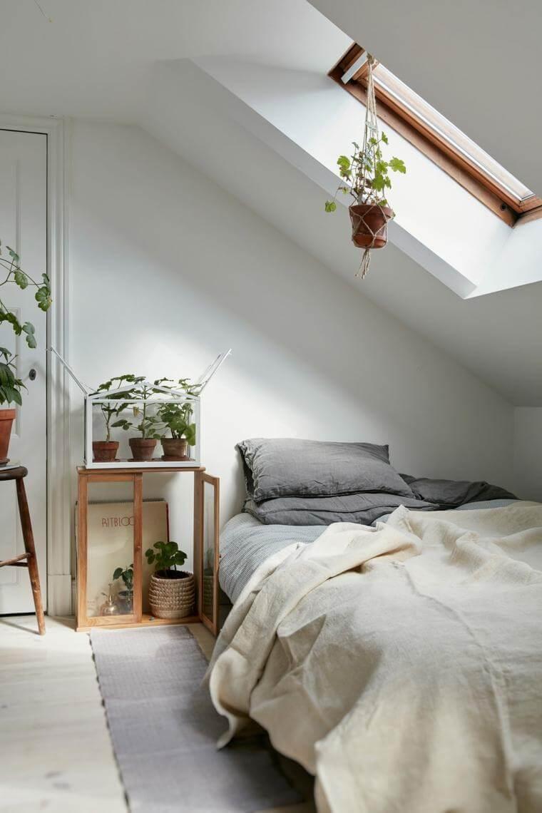 decoração minimalista no quarto de solteiro com planta