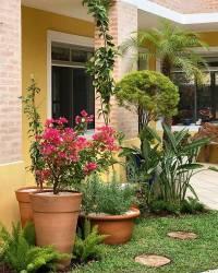 Jardim Simples: +64 Inspirações Para Você Criar o Seu Próprio