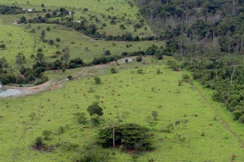Propriedade rural cadastrada na Amazonia