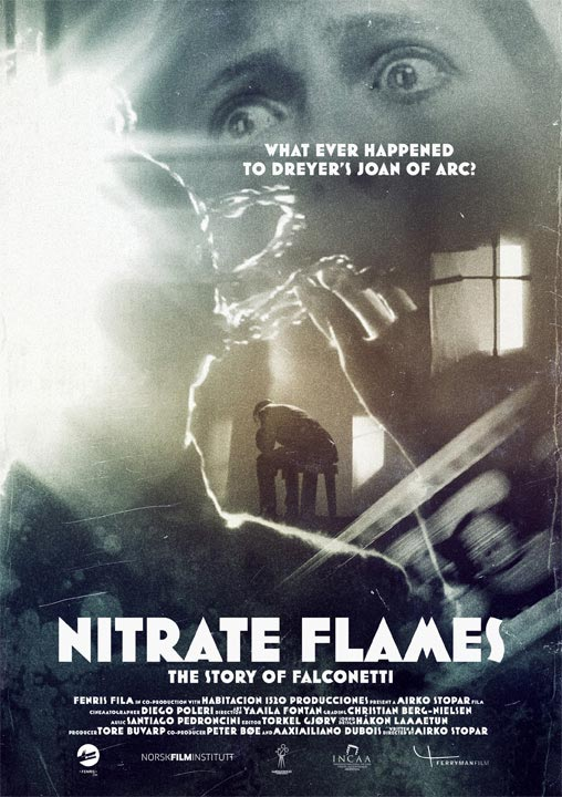 Nitrate Flames