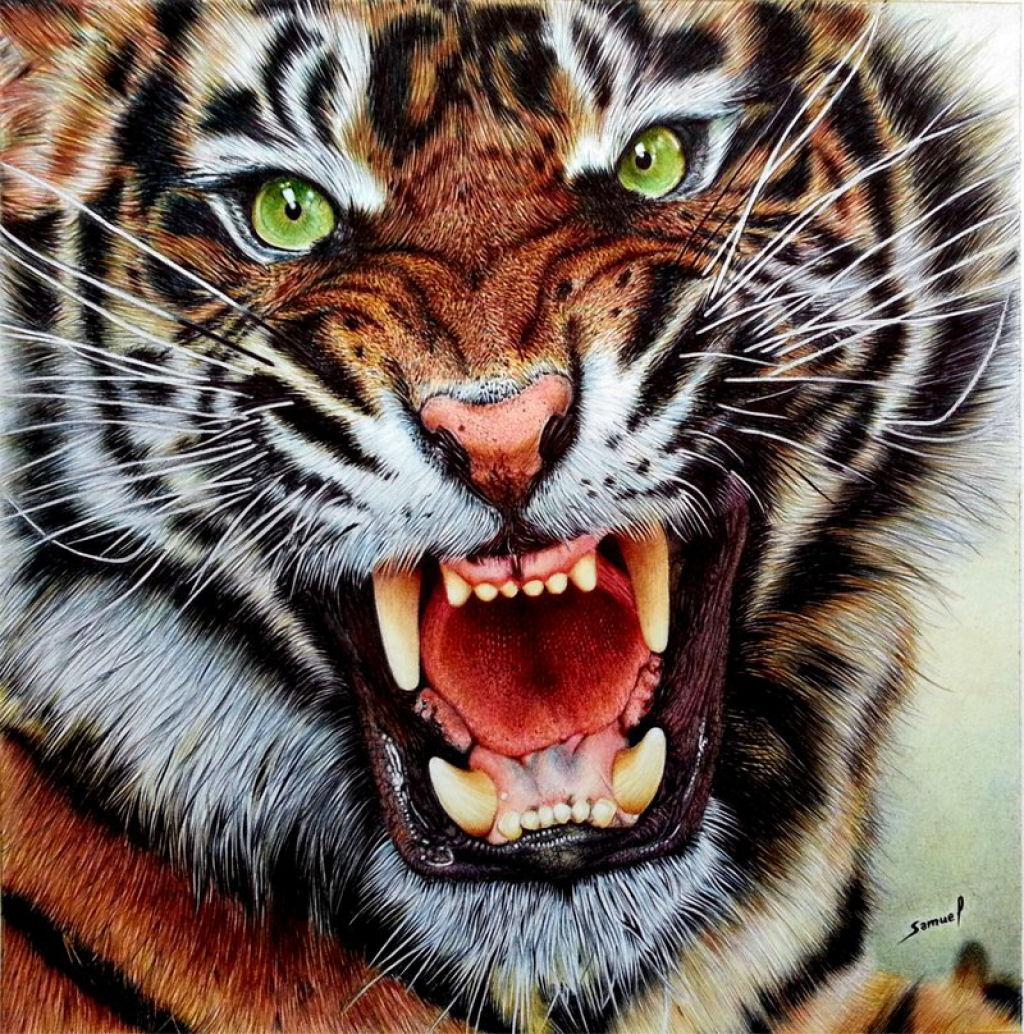 Outras incríveis pinturas feitas com caneta Bic de Samuel Silva 01