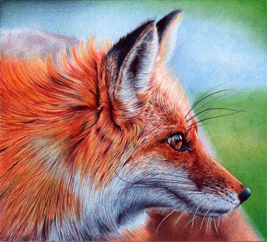 Outras incríveis pinturas feitas com caneta Bic de Samuel Silva 07