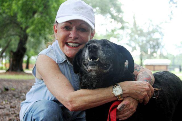 Cadela que viajou 48 km só para ser recusada por seu dono encontrou um novo lar (e é uma mansão)