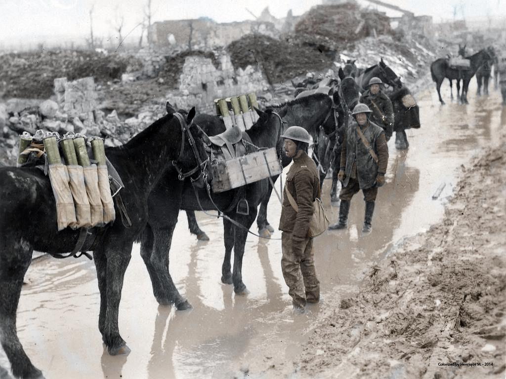 Fotos colorizadas trazem Primeira Guerra à vida 43