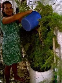 Márcia Muniz usa a água nas plantas e para lavar a casa