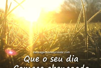 40 Mensagens Bonitas De Bom Dia Com Imagens E Frases Lindas